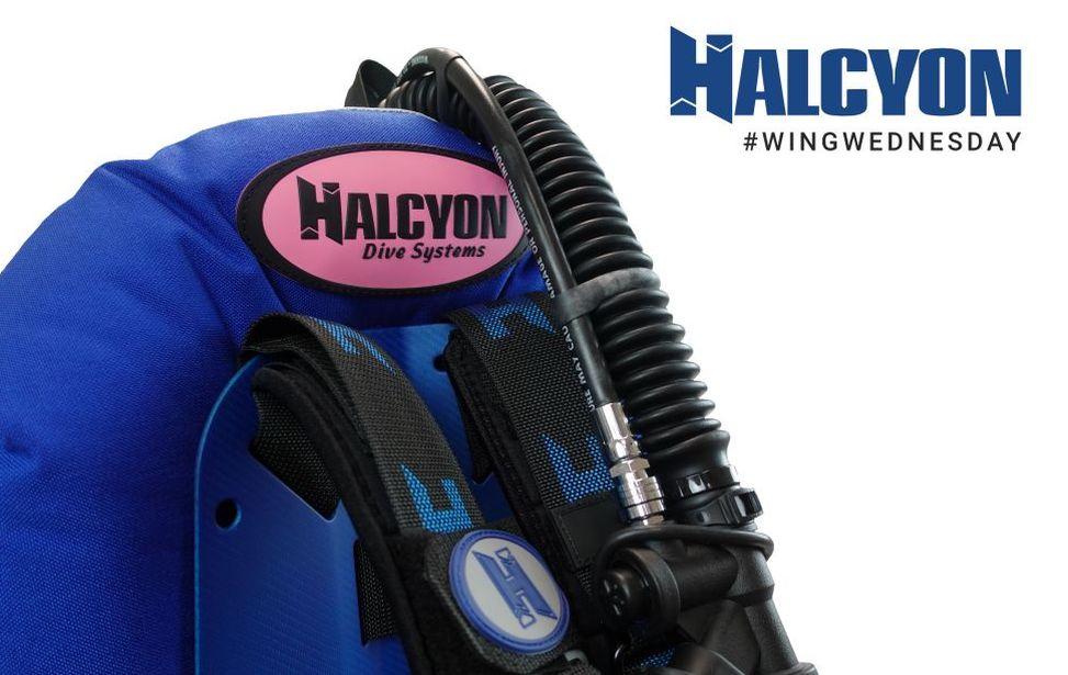 Designing A Halcyon Custom Wing