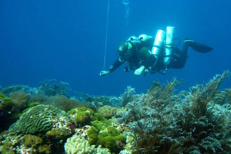TDI Extended Range Diver puerto galera philippines